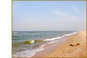 Арабатская коса. Пляж